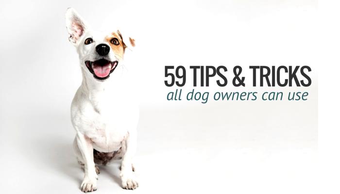 59 Tips & Tricks